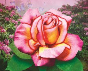 Алмазная картина Color Kit Нежная роза М005