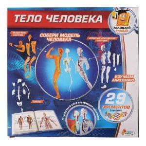 Игрушка Опыты Играем вместе Тело человека KY-10002