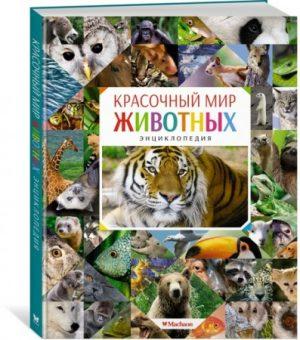 Красочный мир животных Энциклопедия Балле Кристин 6+