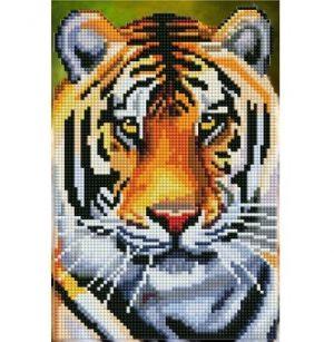 Алмазная мозаика Рыжий кот Величественный тигр 29 цветов 20х30см без подрамника классическая ACF018